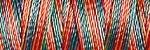 Multifärgad tråd 2241